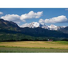 Spring in the Alps Photographic Print