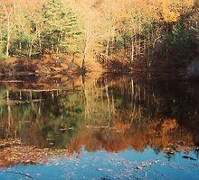Frog Pond, Walden Pond, November 2011 by jenjohnson1968