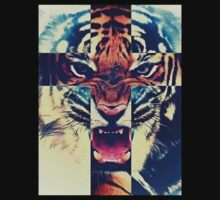 Tiger  by Jordanlocklear1