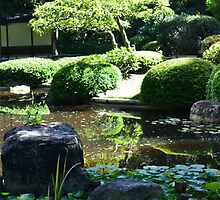 Japanese Garden by Jess Jones