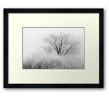 At the Brink of Winter Framed Print