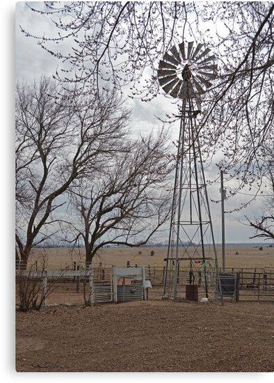 Farm Windmill by RenieRutten