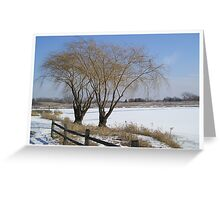 Two Trees in Winter Greeting Card