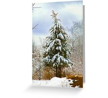 Pine Trees in Winter Snow Greeting Card
