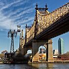 Queensboro Bridge, New York City by Joel Raskin