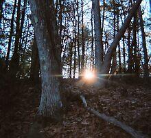 Sun Setting, Walden Pond, November 2011 by jenjohnson1968