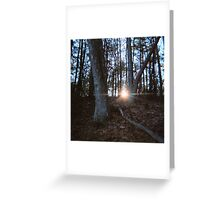 Sun Setting, Walden Pond, November 2011 Greeting Card
