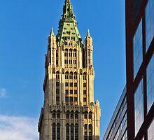 Woolworth Building - New York City by Joel Raskin