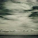 Half Moon Bay by Nicole Doyle