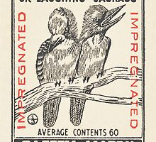 The Kookaburra or Laughing Jackass by Match Box Labels