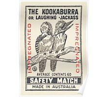The Kookaburra or Laughing Jackass Poster