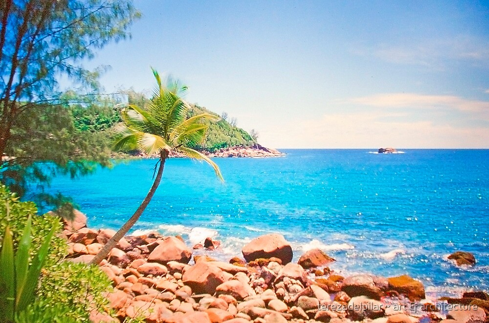 azul turquesa. seychelles. by terezadelpilar~ art & architecture