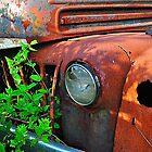 Old Truck by joevoz