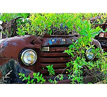Truck in the bush Photographic Print