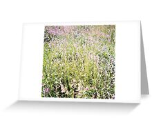 Fields of Clover, Belle Isle Marsh, May 2012 Greeting Card