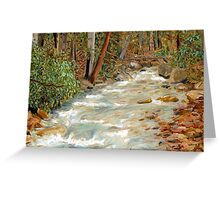 Linn Run, Laurel Ridge, Allegheny Mountains David Olson Greeting Card