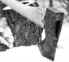 Ax and Wood by Irene VanBuskirk