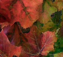 Autumn Moods 3 by Carol  Cavalaris