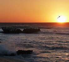 Trigg Beach at Sunset, Western Australia by haymelter