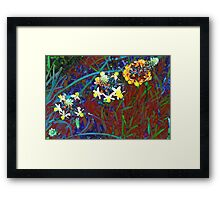 Jewels in the grass Framed Print