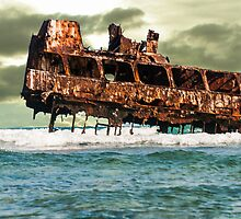 Rust in peace by Miron Abramovici