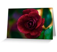 PS3-6-05727 Greeting Card