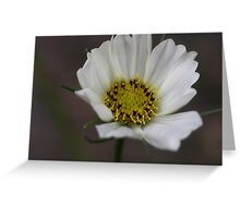 PS3-6-60084 Greeting Card