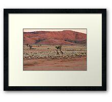 Two Kangaroos Framed Print