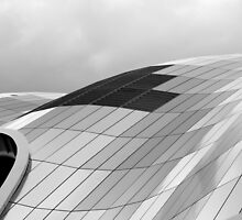 The curve of the roof by Lorna Taylor
