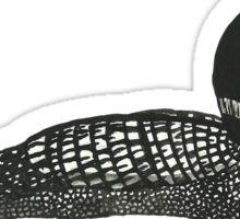 Common Loon Sticker