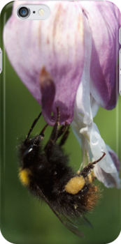 Busy Bee! by Maisie Sinclair
