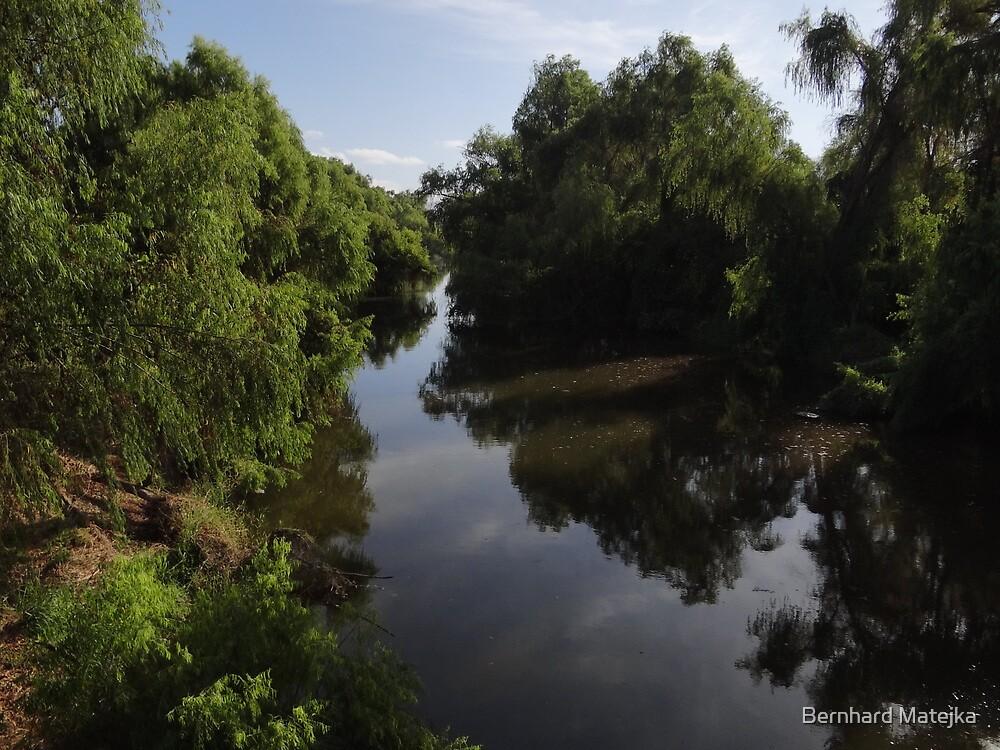 Riverscape - Paisaje Fluvial by Bernhard Matejka