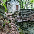 Old Mill House in Valle Maggia by Michael Brewer