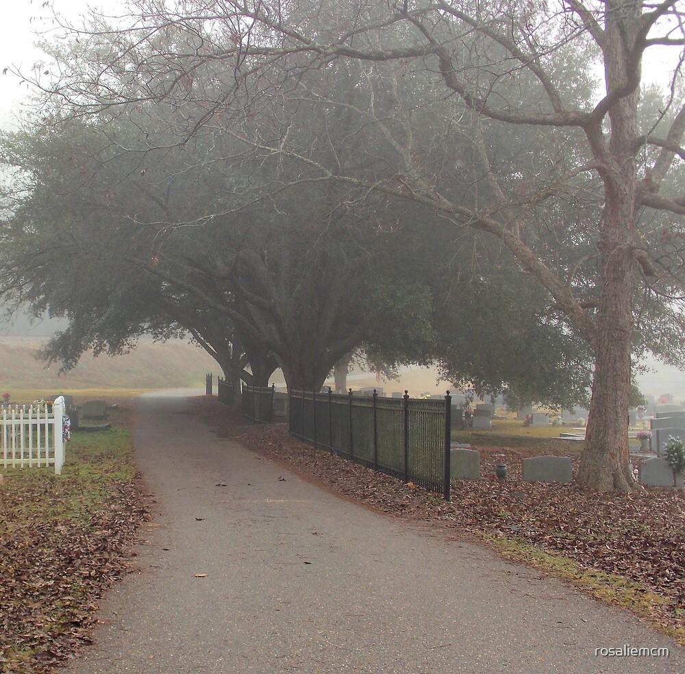 Fog in the Cemetery by rosaliemcm