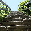 In the middle of Nature...........Stone-Steps by Heidi Mooney-Hill