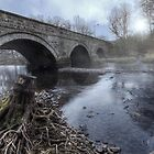 Water Under The Bridge || Bridge over Endrick Water, Fintry by Anir Pandit