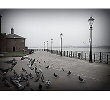 Pigeons on the Promenade.  Photographic Print