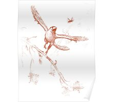 Bug Chasing Archaeopteryx Poster