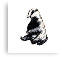 Fluffy Badger Canvas Print