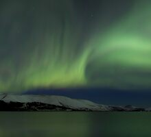 dancing into the night by JorunnSjofn Gudlaugsdottir