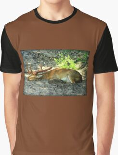Sleeping Deer Graphic T-Shirt