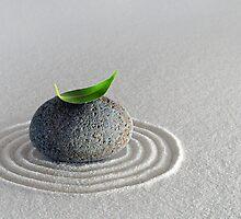 Quiet Meditation by shuttersuze75