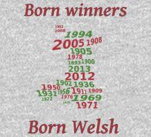 Wales 2013 Champions years Baby Tee