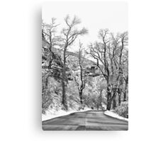 Winter Road Black and White Canvas Print