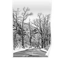 Winter Road Black and White Poster