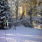 Snow in Devon by lezvee