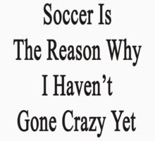 Soccer Is The Reason Why I Haven't Gone Crazy Yet  by supernova23