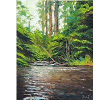 Badger Creek above the Weir Photographic Print