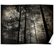 Foggy Nightfall Poster