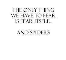 Spiders Photographic Print